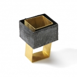 Parallel Worlds - ring - silver, 18kt yellow gold, niello, patina  2014